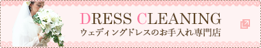 DRESS CLEANING ドレスのお手入れ専門店