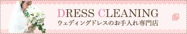 DRESS CLEANING ドレスのお手入れ専門店